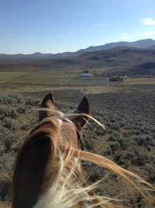 Surveying the ranch