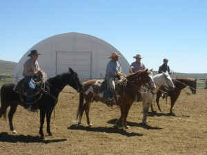 Cowboys ready for branding action