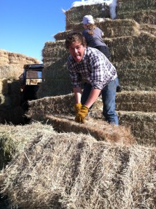 Too much fun with small bales